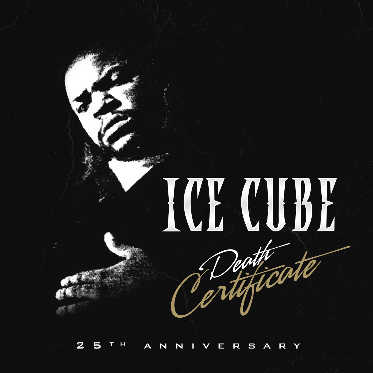 Ice Cube Cover Photo Minimalist ice cube- 25th anniersary of death cetififcate cover contest