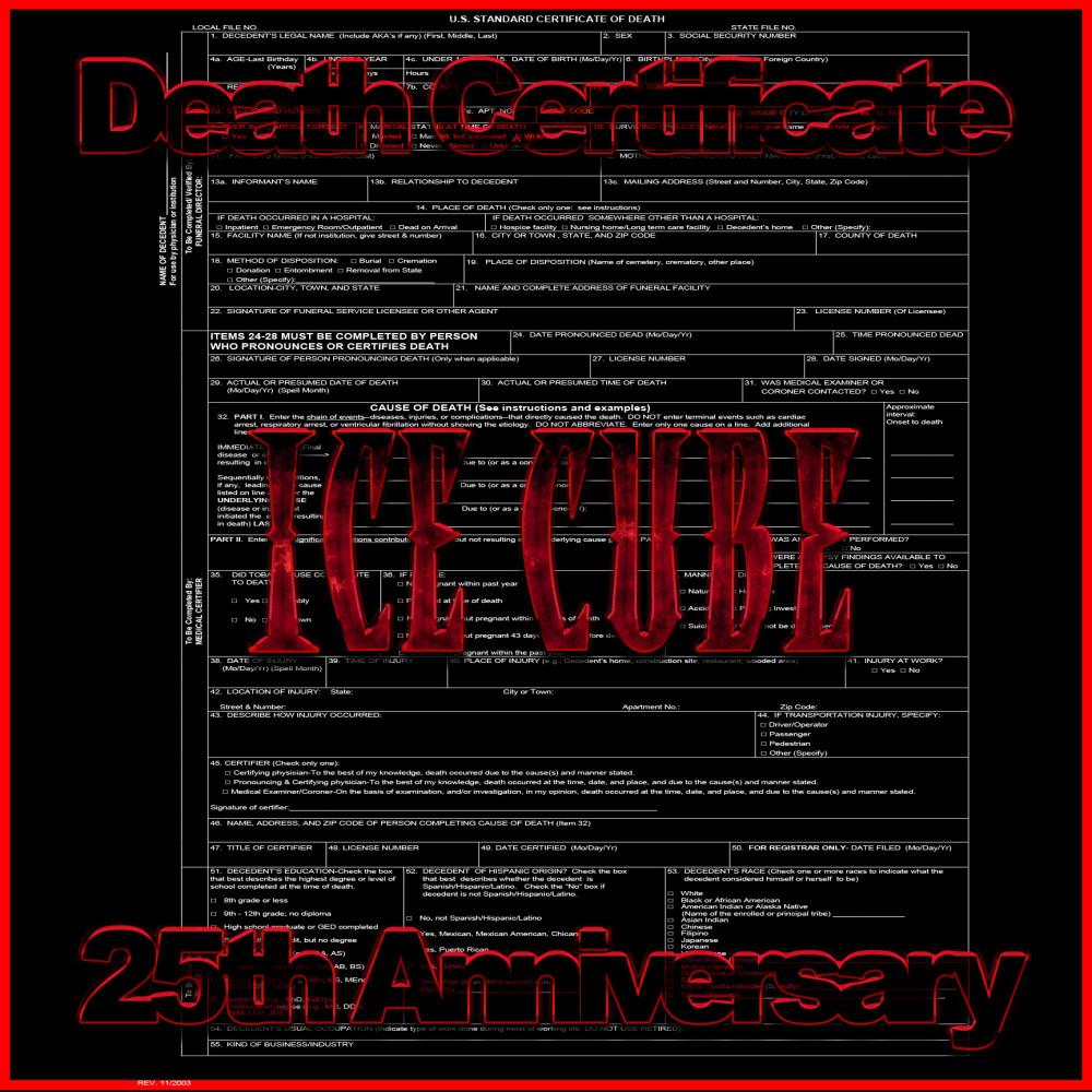 Death Certificate 25th Anniversary Album Cover by Eric Reese