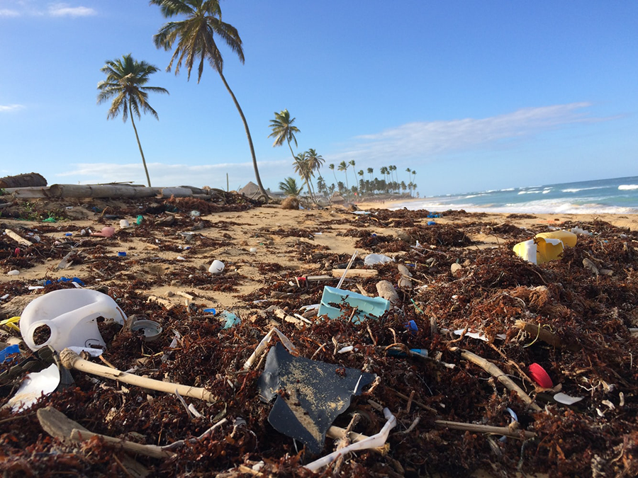 plastic-removal-beach-environment.png