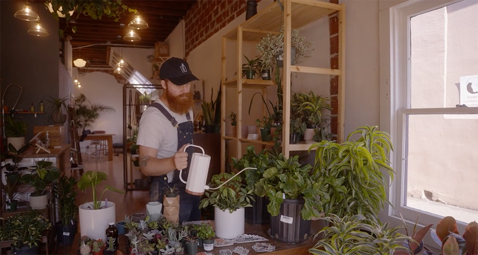 Special Category Awards - Get Capital - $3,000 | Houseplant Happiness: The Power of a Plant ShopfeaturingUflora PlanthousebyIsaac O'Farrell - Mastercard
